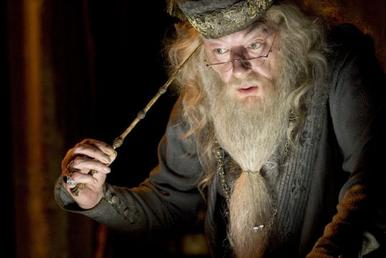 harry potter and dumbledore in lucid dreaming