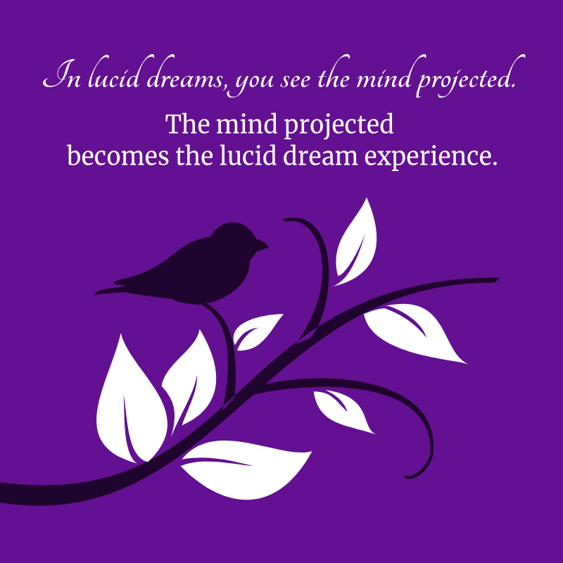 In lucid dreams, you see the mind projected.