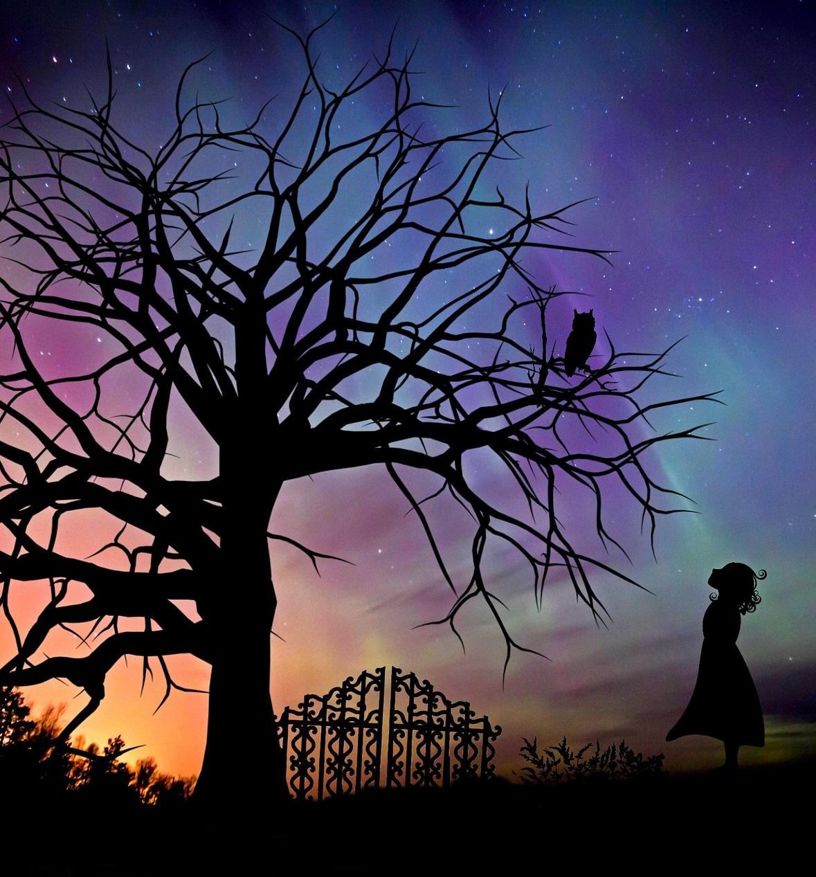 asking own in lucid dreaming
