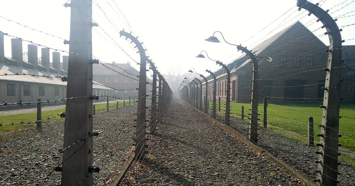 Nazi camp in lucid dreaming